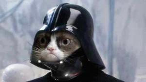 grumpy cat star wars