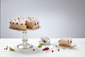 torta0223