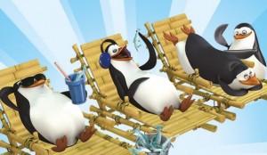 madagaszkár pigvinjei  (3)