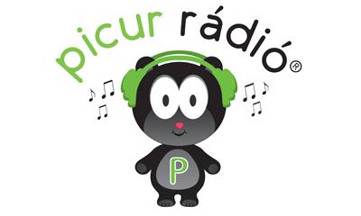 picur1
