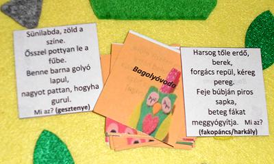 bagolyovi6